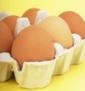 egg 85w