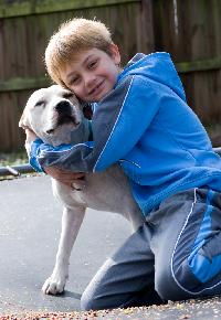 pit bull kid hug dog