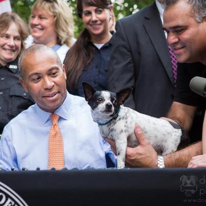 Gov. Patrick signs animal control