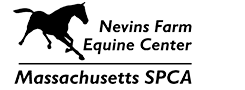 Equine Center Logo
